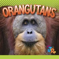 Cover image for Orangutans