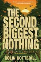 Cover image for The second biggest nothing