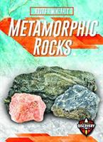 Cover image for Metamorphic rocks