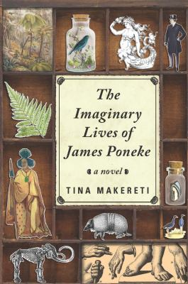 Cover image for The imaginary lives of James Pōneke : a novel