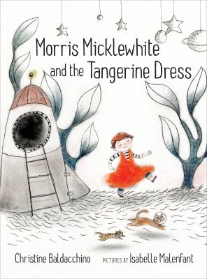 Cover image for Morris Micklewhite and the tangerine dress