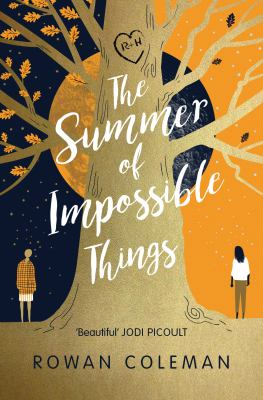 Cover image for The summer of impossible things