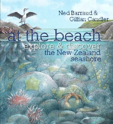 Cover image for At the beach : explore & discover the New Zealand seashore