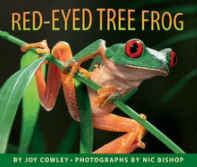 Cover image for Red-eyed tree frog