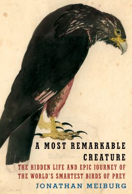 Cover image for A most remarkable creature : the hidden life and epic journey of the world's smartest birds of prey