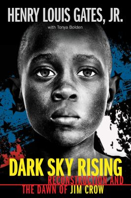Cover image for Dark sky rising : Reconstruction and the dawn of Jim Crow