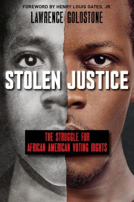 Cover image for Stolen justice : the struggle for African American voting rights