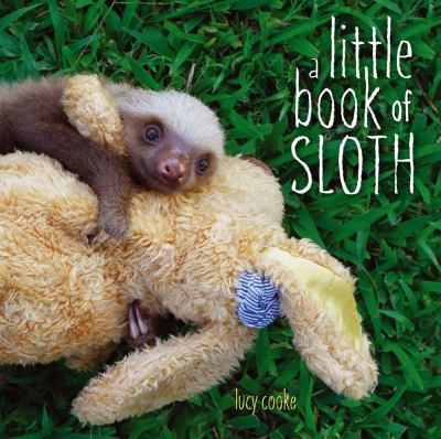 Cover image for A little book of sloth