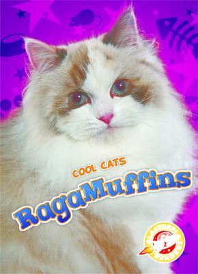 Cover image for RagaMuffins