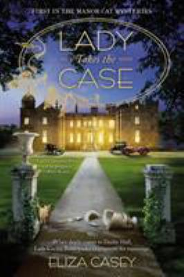 Cover image for Lady takes the case