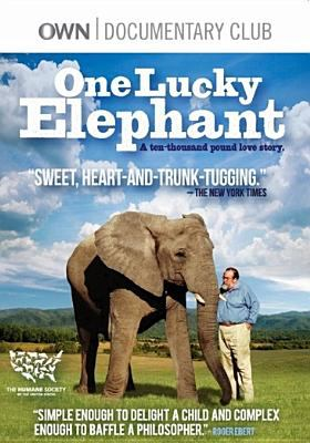 Cover image for One lucky elephant
