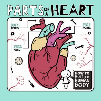 Parts-of-a-heart