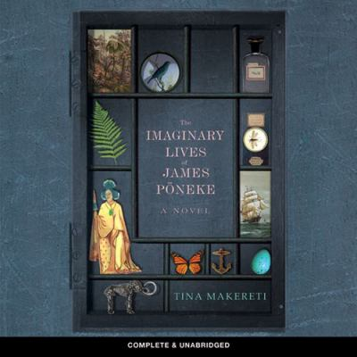 Cover image for The imaginary lives of James Poneke