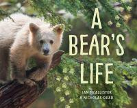 A bear's life cover