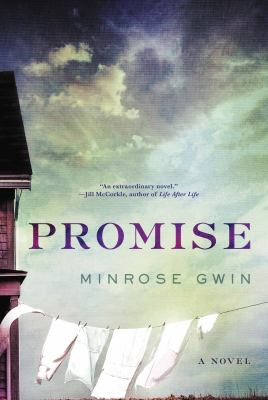 Picture of book cover for promise