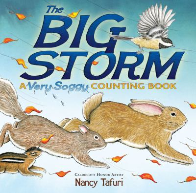 Cover image for The big storm : a very soggy counting book / Nancy Tafuri.