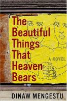 Cover image for The beautiful things that heaven bears