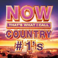 Cover illustration for Now That's What I Call Country #1's