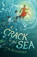 Cover illustration for A Crack in the Sea