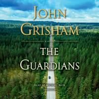 Cover illustration for The Guardians