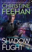 Cover illustration for Shadow Flight