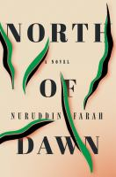 Cover illustration for North of Dawn