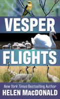 Cover illustration for Vesper Flights