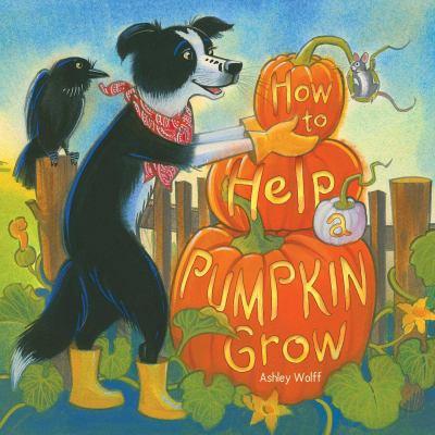 How to Help a Pumpkin Grow