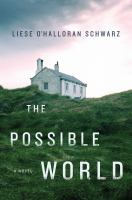 Cover illustration for The Possible World