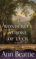 Cover illustration for A Wonderful Stroke of Luck