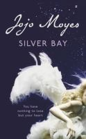 Cover image for Silver bay