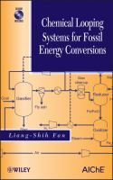 Cover image for Chemical looping systems for fossil energy conversions