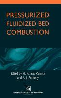 Cover image for Pressurized fluidized bed combustion