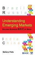 Cover image for Understanding emerging markets : building business bric by brick