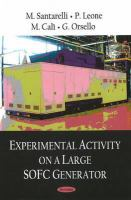 Cover image for Experimental activity on a large SOFC generator