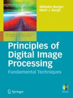 Cover image for Principles of digital image processing : fundamental techniques