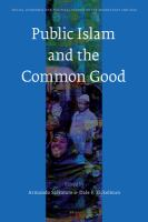 Cover image for Public Islam and the common good