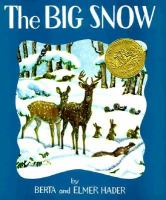 Cover image for The big snow