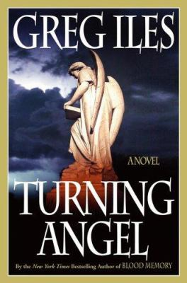 Cover image for Turning angel