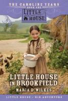 Cover image for Little house in Brookfield