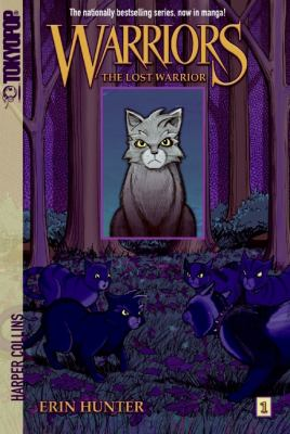 Cover image for The lost warrior