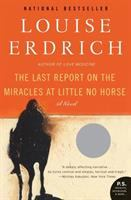 Cover image for The last report on the miracles at Little No Horse : a novel