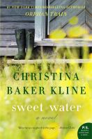 Cover image for Sweet water : a novel