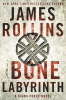 Cover image for The bone labyrinth