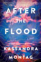 Cover image for After the flood : a novel