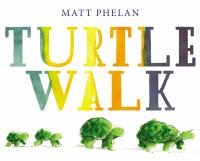 Cover image for Turtle walk