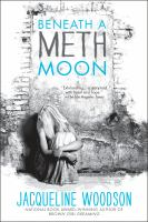 Cover image for Beneath a meth moon : an elegy