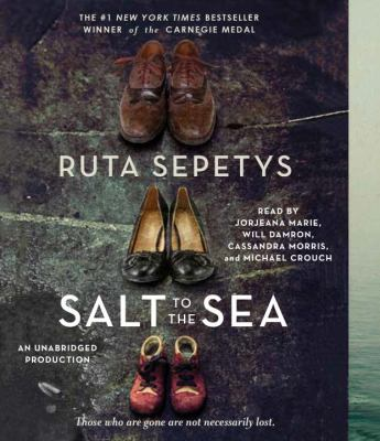 Cover image for Salt to the sea