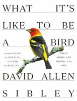 Cover image for What it's like to be a bird : from flying to nesting, eating to singing -- what birds are doing, and why