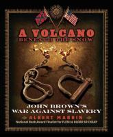 Cover image for A volcano beneath the snow : John Brown's war against slavery